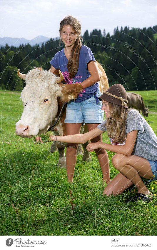 Zwei Cowgirls Natur Jugendliche Sommer Landschaft Tier Umwelt Zufriedenheit festhalten Landwirtschaft Haustier Kuh Forstwirtschaft Nutztier Viehzucht Hirte