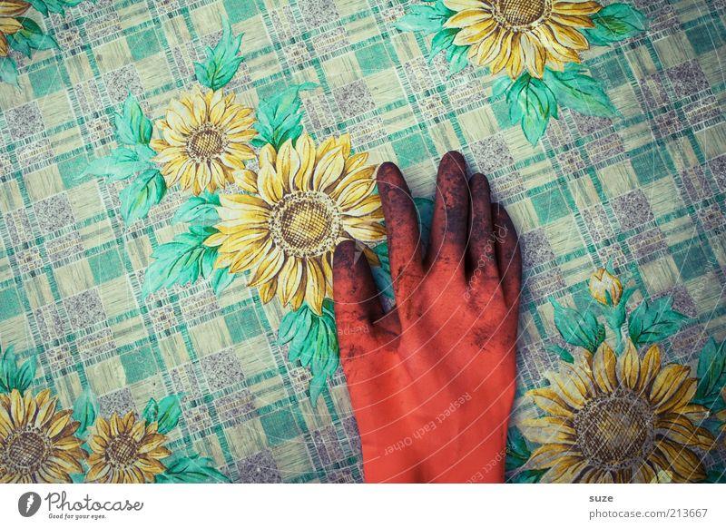 Eine Hand wäscht die andere ... Hand Sommer Arbeit & Erwerbstätigkeit Frühling orange dreckig Haut Erde Tisch Pause liegen Freizeit & Hobby Sonnenblume fertig Handschuhe