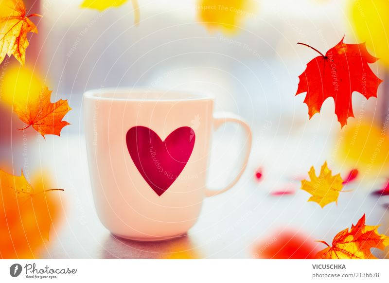 Tee Tasse mit Herz und fallende bunte Herbst Blätter Natur Pflanze Blatt Fenster Leben Liebe Stil Garten Design Häusliches Leben retro Zeichen Getränk Kaffee