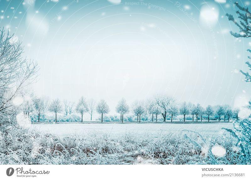 Winterlandschaft mit Schnee Natur Ferien & Urlaub & Reisen Weihnachten & Advent schön Baum Landschaft Lifestyle Hintergrundbild Wiese Garten Stimmung Park Feld