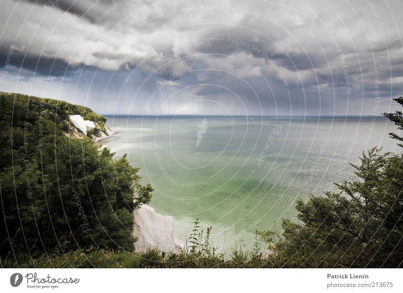 once in a lifetime Umwelt Natur Landschaft Pflanze Himmel Wolken Gewitterwolken Wetter schlechtes Wetter Unwetter Wind Regen Hügel Felsen Wellen Küste Bucht