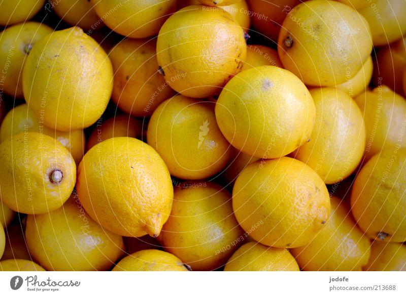 Zitronen Lebensmittel Frucht gelb exotisch viele mehrere Farbfoto mehrfarbig Außenaufnahme Menschenleer Tag Licht Schwache Tiefenschärfe Vogelperspektive sauer