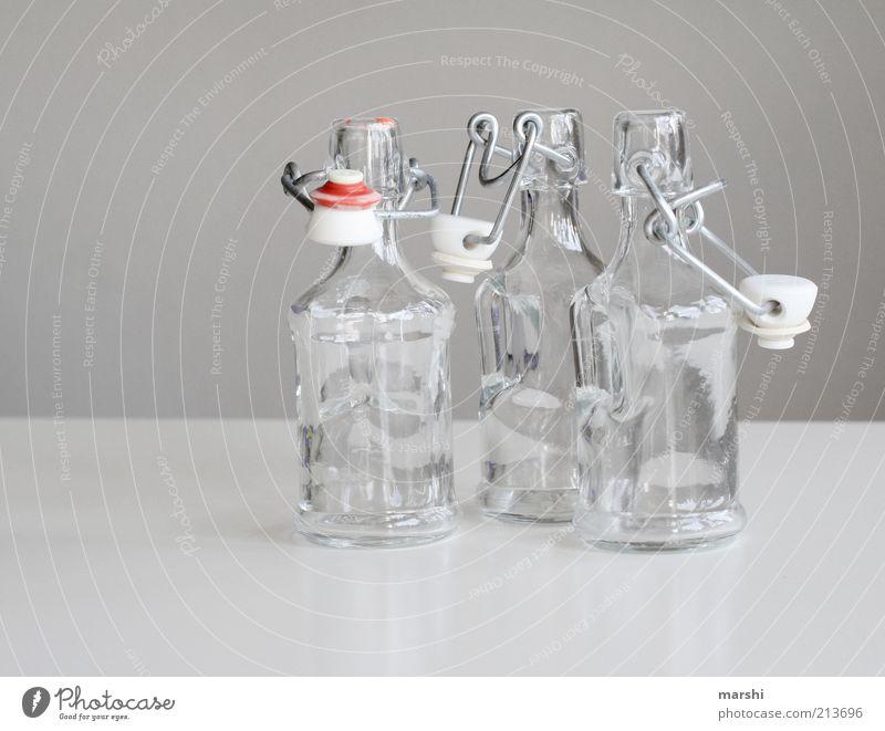 glasklar Getränk Glas hell Behälter u. Gefäße Flaschenhals Flaschenverschluss Klarheit grau leer Farbfoto Innenaufnahme Pfandflasche 3 offen Stillleben