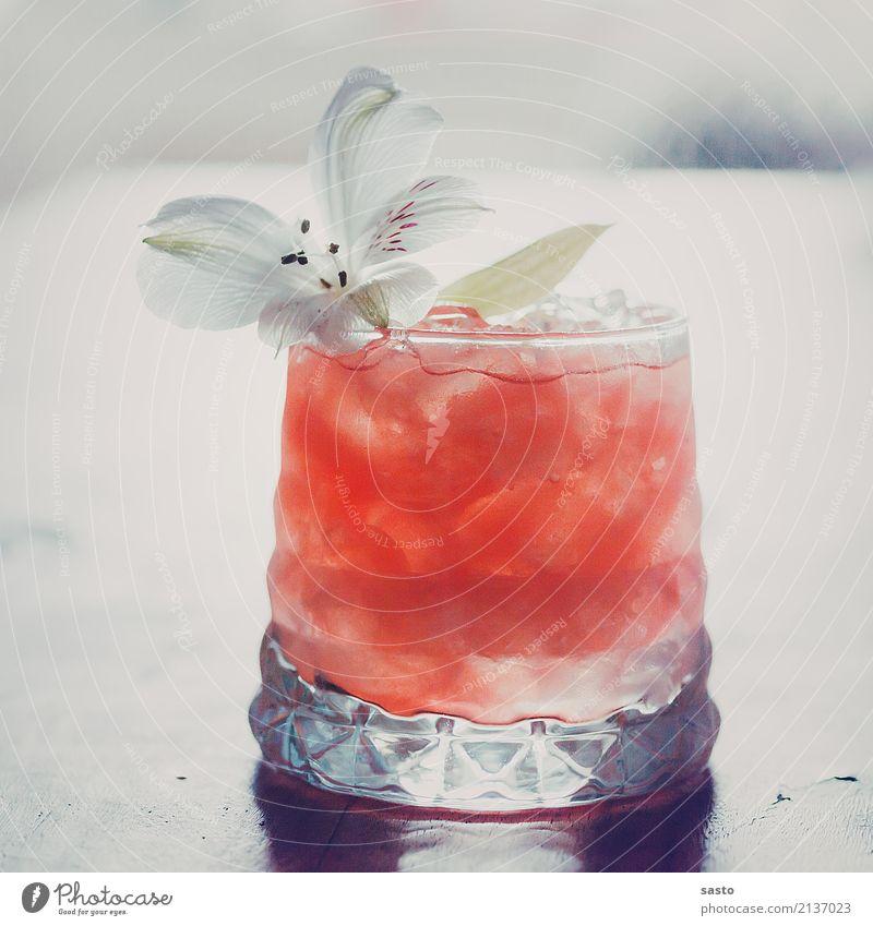 Summerdrink Getränk Erfrischungsgetränk Mocktail Glas ästhetisch elegant exotisch Flüssigkeit kalt süß rosa weiß Zufriedenheit Ferien & Urlaub & Reisen Melonen