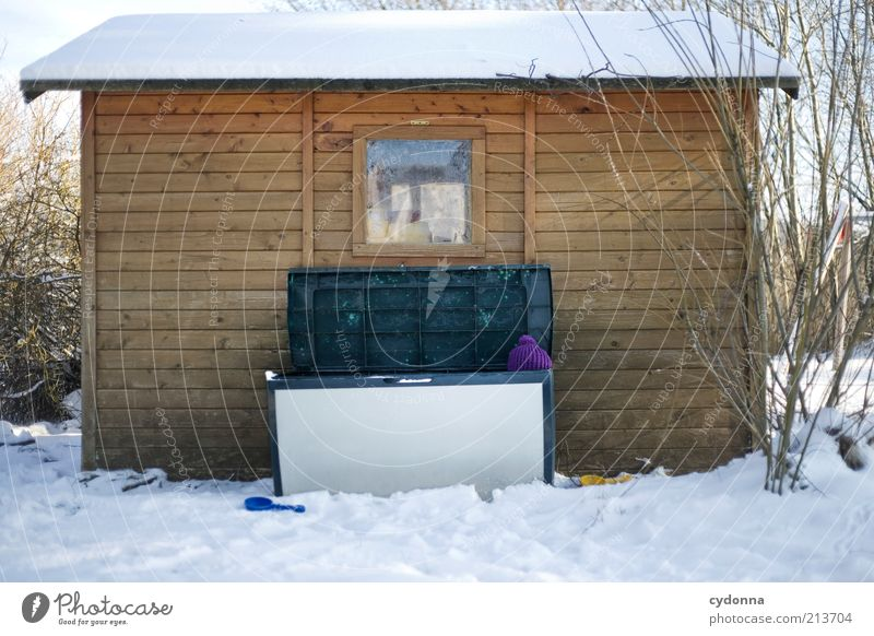 Das perfekte* Versteck Natur Winter kalt Schnee Garten Umwelt Spielzeug Kindheit Mütze Hütte Kreativität Kiste Versteck Bekleidung Perspektive Truhe