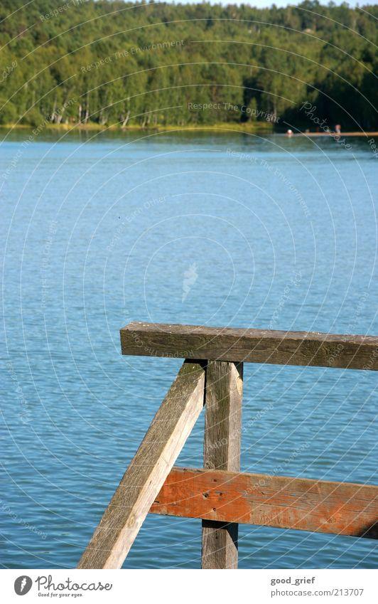 Luft: 20°C, Wasser: 10°C:...beste Bedingungen zum Baden Natur Himmel Pflanze Sommer Wald Holz See Landschaft Wellen Umwelt Fluss Bucht Steg Seeufer Schönes Wetter Geländer