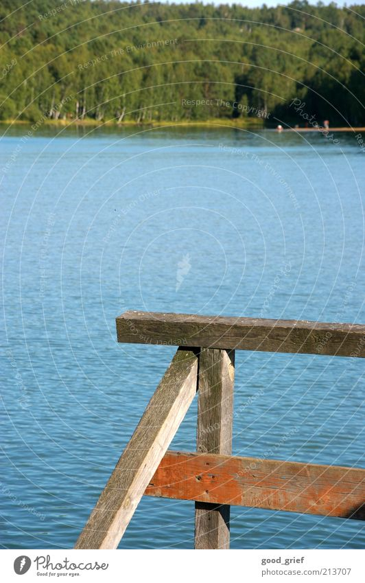 Luft: 20°C, Wasser: 10°C:...beste Bedingungen zum Baden Natur Himmel Pflanze Sommer Wald Holz See Landschaft Wellen Umwelt Fluss Bucht Steg Seeufer