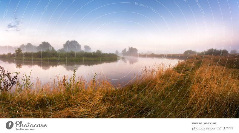 Nebeliger Fluss morgens. Panorama. Warmer Sommermorgen Himmel Natur Ferien & Urlaub & Reisen blau grün Wasser Baum Landschaft Ferne Strand Wald gelb Herbst