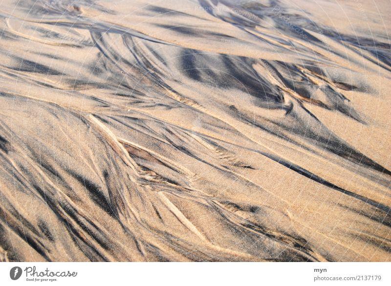 Muster im Sand Ferien & Urlaub & Reisen Tourismus Abenteuer Ferne Sommer Sommerurlaub Sonnenbad Strand Meer Umwelt Natur Landschaft Urelemente Erde Wellen Küste