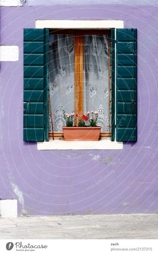 !trash! 2017 | Li-La-Launehaus Ferien & Urlaub & Reisen Burano Venedig Italien Dorf Fischerdorf Altstadt Haus Mauer Wand Fassade Fenster Fensterladen