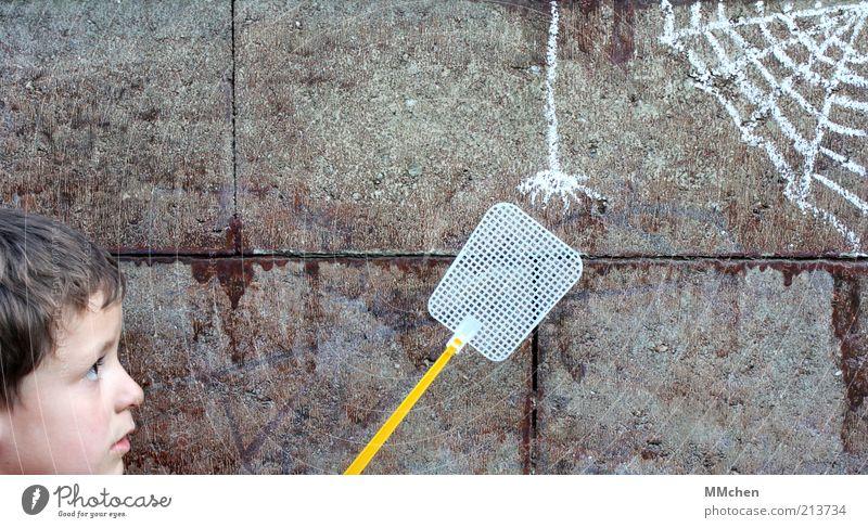 Gleich hab ich Dich! Mensch Kind ruhig Wand Spielen grau Kopf Mauer Angst fangen gruselig Kindheit Mut Kreativität Ekel Spinne