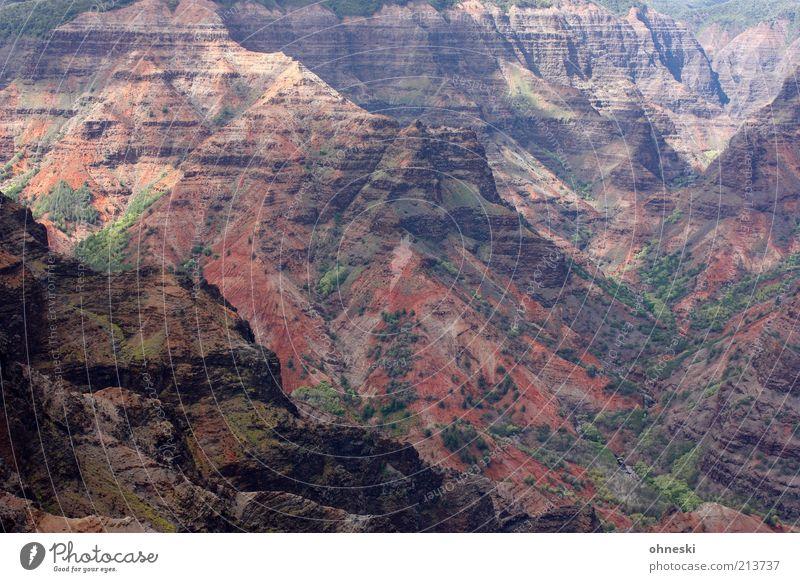 Waimea Canyon ohne Himmel Natur Landschaft Umwelt Felsen Erde Reisefotografie Hügel Urelemente Schlucht Hawaii gigantisch