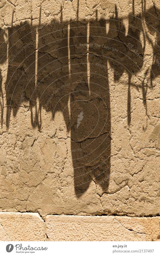 große Wäsche Häusliches Leben Mauer Wand Fassade hängen trocken gelb Reinlichkeit Sauberkeit Ordnung Stadt Schatten Wäscheleine Waschtag trocknen nachhaltig