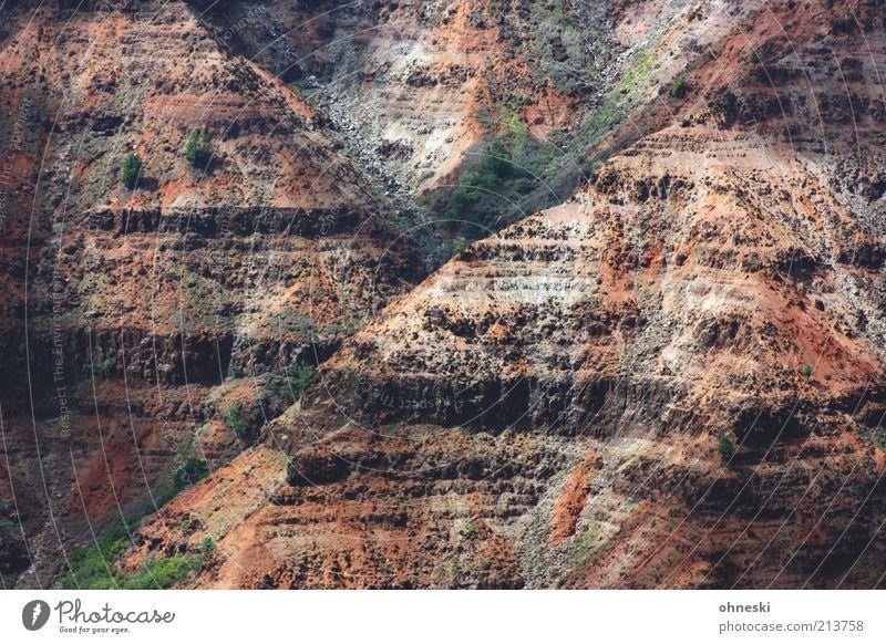 Y Landschaft Urelemente Erde Felsen Schlucht Waimea Canyon Natur ursprünglich Farbfoto Außenaufnahme rot braun