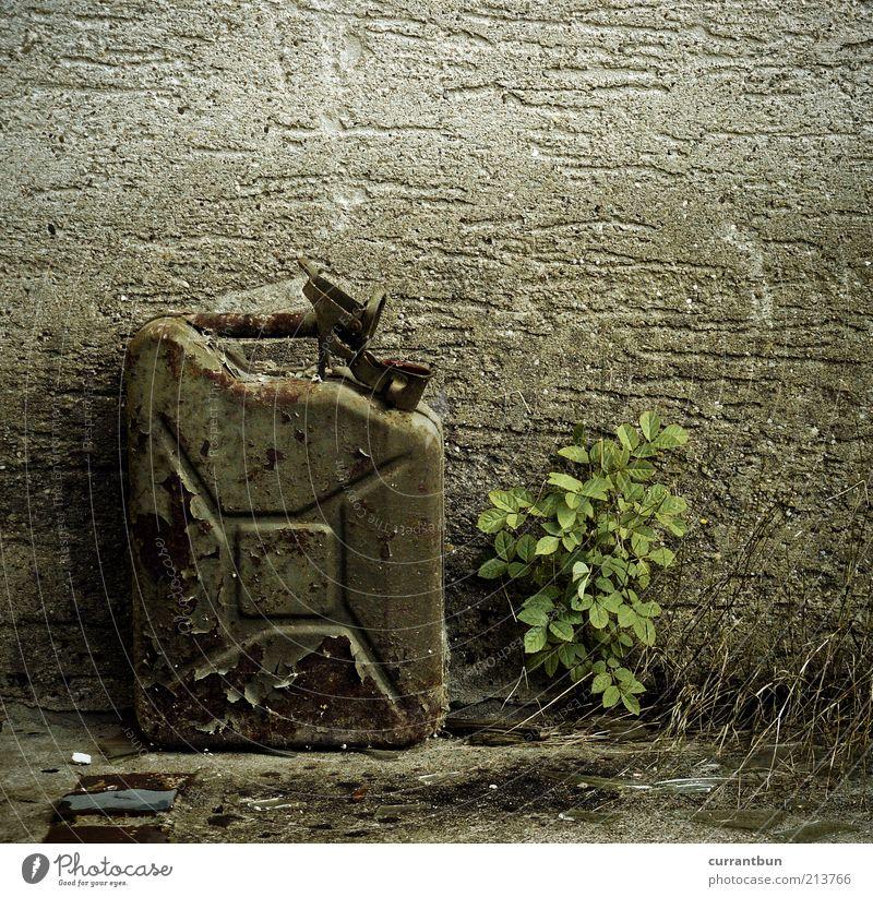tarnquadrat Natur alt Mauer Beton Müll Erdöl Umweltverschmutzung Benzin Schrott verrotten Unkraut Benzinkanister