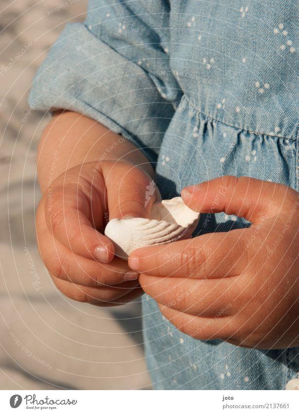 Ertasten Freude Zufriedenheit Spielen Ferien & Urlaub & Reisen Ausflug Sommer Sommerurlaub Strand Kindererziehung Bildung lernen Kleinkind Mädchen Kindheit Hand