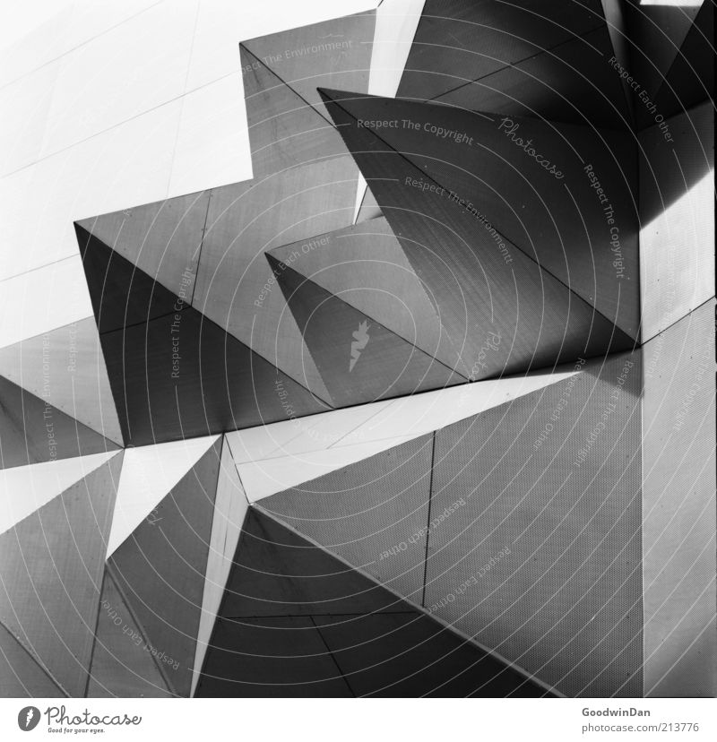 Analoge Kanten II weiß schwarz Wand Architektur grau Gebäude Fassade modern authentisch außergewöhnlich bedrohlich einzigartig Spitze Bauwerk Schwarzweißfoto