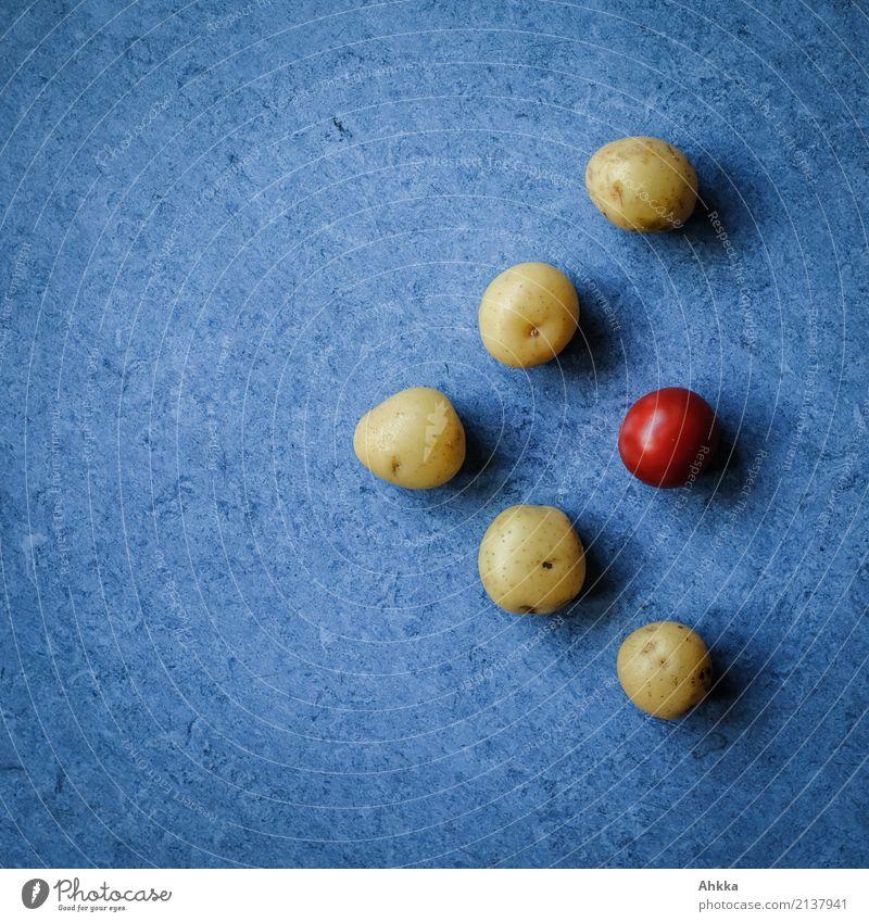Pfeil Lebensmittel Gemüse Kartoffeln Tomate Ernährung Bioprodukte Vegetarische Ernährung Diät Slowfood Gesunde Ernährung Wirtschaft blau braun rot diszipliniert