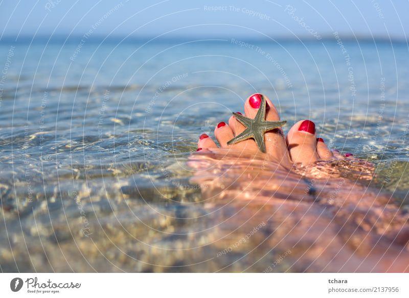 Sommer entspannen Frau Natur Ferien & Urlaub & Reisen blau Farbe Meer Erholung Strand Erwachsene natürlich Sand Dekoration & Verzierung Idylle Aussicht