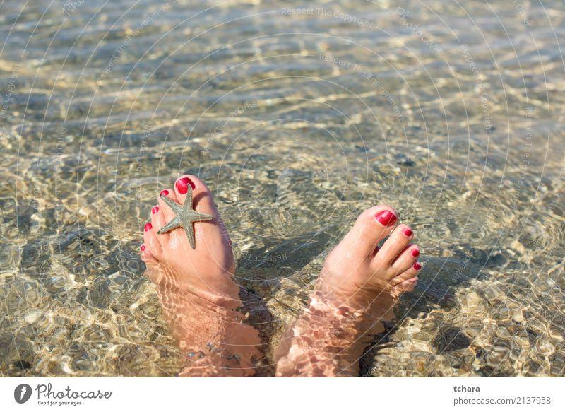 Sommer entspannen Design exotisch Nagellack Erholung Ferien & Urlaub & Reisen Strand Meer Dekoration & Verzierung Tapete Frau Erwachsene Fuß Natur Sand