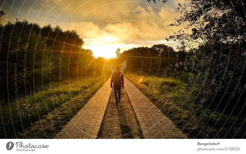 Abendspaziergang Mensch Natur Ferien & Urlaub & Reisen Sommer Sonne Erholung Einsamkeit ruhig Ferne Leben Freiheit Tourismus Schwimmen & Baden Ausflug