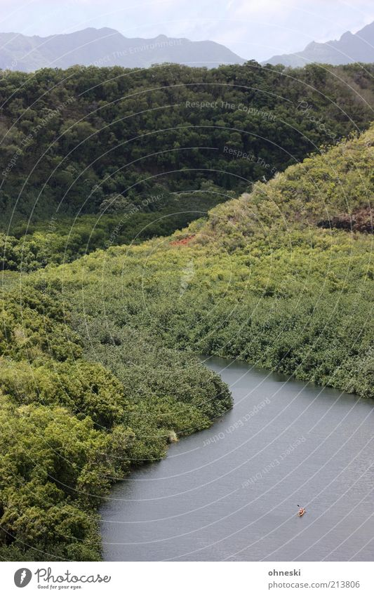 auf dem Wailua River Natur Baum Einsamkeit Wald Ferne Landschaft Leben Berge u. Gebirge Kraft natürlich Perspektive Ziel Fluss Hügel Willensstärke Leistung