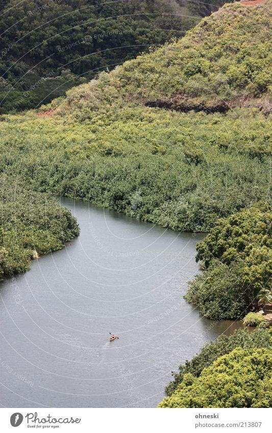 Kajak fahr´n Natur Landschaft Baum Wald Urwald Hügel Fluss Kraft Mut Tatkraft Leistung Ziel Farbfoto Außenaufnahme Totale Einsamkeit Sportler Vogelperspektive
