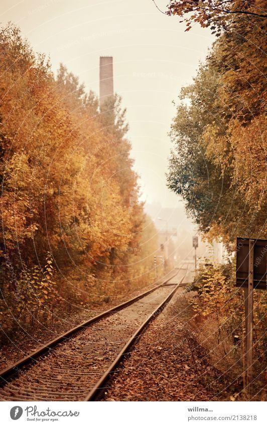ein unmoralisches angebot Herbst Verkehrswege Bahnfahren Bahnlinie Schienenverkehr Gleise Ziel herbstlich Herbstfärbung Schornstein Straßenbahn Farbfoto