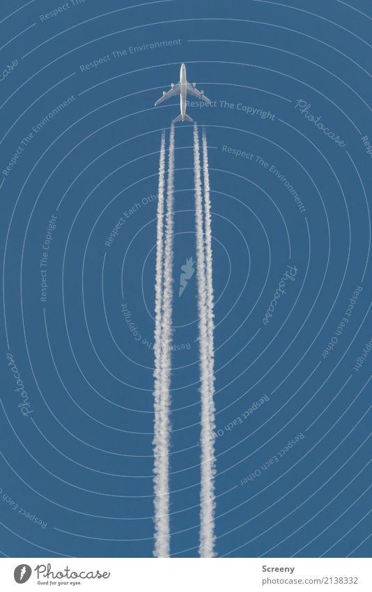 Alle Aluhüte fliegen hoooooch! Himmel Ferien & Urlaub & Reisen blau weiß Ferne Tourismus oben Luftverkehr Schönes Wetter Geschwindigkeit hoch Flugzeug