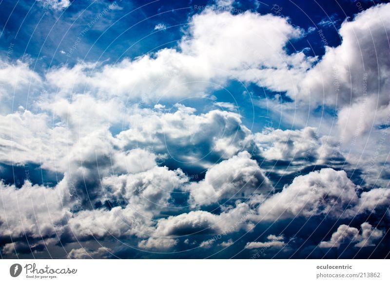himmlisch Urelemente Himmel nur Himmel Wolken Sommer Schönes Wetter ästhetisch frei Unendlichkeit hell blau Farbe Ferien & Urlaub & Reisen Freiheit strahlend