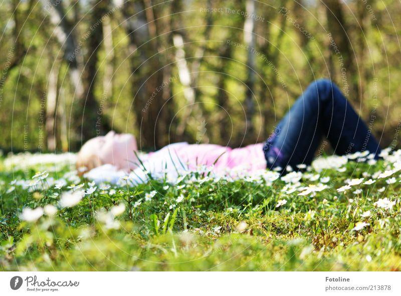 Für John Krempl Mensch feminin Kindheit Kopf Bauch Beine Umwelt Natur Landschaft Pflanze Urelemente Erde Frühling Baum Blume Gras Blüte Wiese Wald hell
