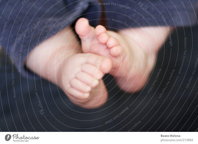 Bald auf eigenen Füßen stehen Mensch Kind schön Leben Fuß Zufriedenheit Baby Gesundheit Haut klein Beginn neu paarweise natürlich Warmherzigkeit berühren