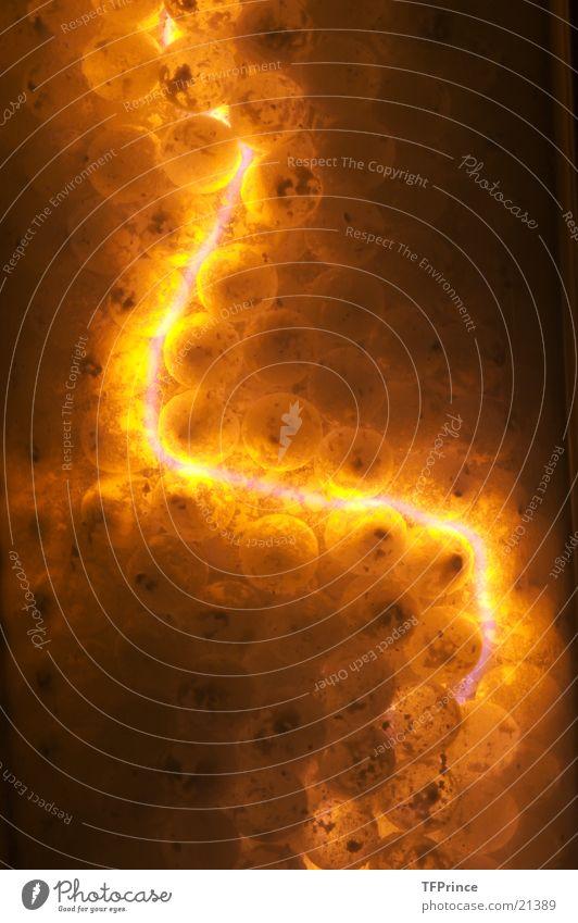 Plasmalampe Leuchtstab Makroaufnahme Langzeitbelichtung