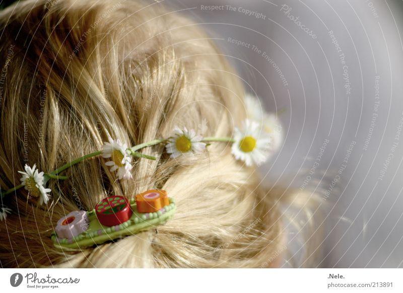 Blumenkind. Mensch feminin Kind Kleinkind Mädchen Kindheit Kopf Haare & Frisuren 1 1-3 Jahre Accessoire Schmuck blond langhaarig Zopf Haarspange Blühend gelb