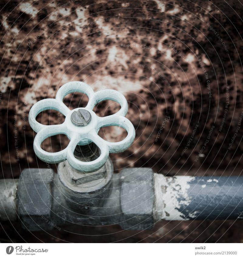 Kurbel Wasserhahn Rohrleitung Wasserrohr Metall alt fest Sicherheit Kontrolle Versorgung Rost Farbfoto Gedeckte Farben Außenaufnahme Detailaufnahme