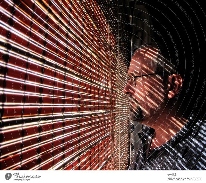 Hobbydedektiv Mensch Mann Gesicht ruhig Fenster Haare & Frisuren Kopf Mund warten Erwachsene Wohnung maskulin Nase stehen Ohr Dekoration & Verzierung