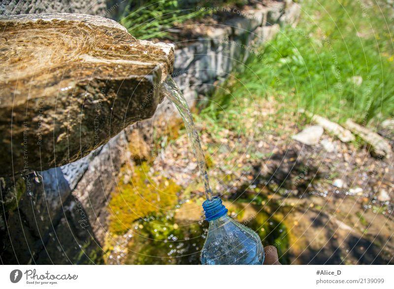 Natur Trinwasserquelle Lifestyle Gesunde Ernährung Sommer Berge u. Gebirge Umwelt Urelemente Erde Wasser Wassertropfen Sonnenlicht Klima Gras Moos Bach Oase