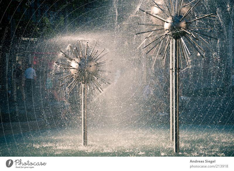 Pusteblumen zum Geburtstag Wasser Wassertropfen Dresden Stadtzentrum Brunnen Löwenzahn frisch Erfrischung Prager Strasse Gegenlicht Wasserspiel spritzen