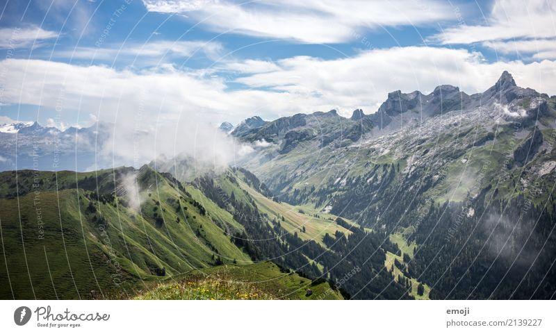 Nebelschwaden Umwelt Natur Landschaft Sommer Schönes Wetter Hügel Alpen Berge u. Gebirge natürlich grün Schweiz Tourismus Ferien & Urlaub & Reisen