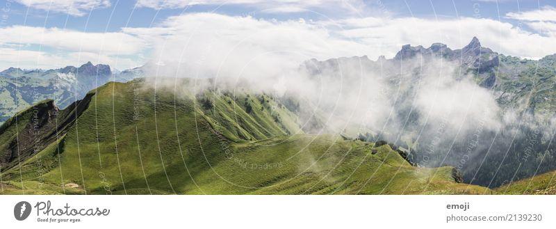 Nebelschwaden Umwelt Natur Landschaft Sommer Herbst Schönes Wetter Hügel Alpen Berge u. Gebirge natürlich grün Nebelbank Schweiz Tourismus