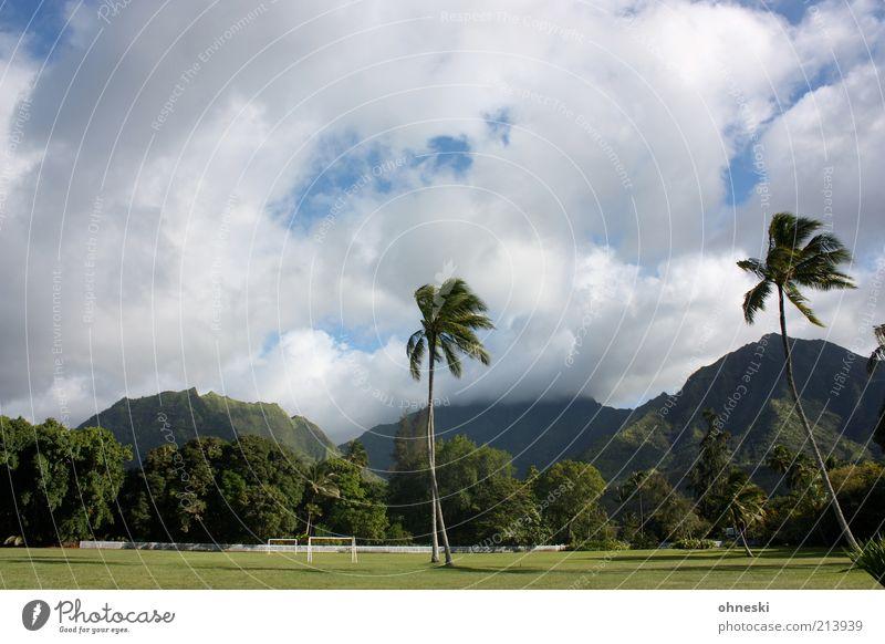 Fußballplatz hawaiianisch Sportstätten Landschaft exotisch Palme Urwald Hügel Kauai Farbfoto Außenaufnahme Menschenleer Berge u. Gebirge Wolken Sportrasen