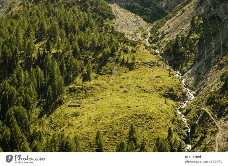 idyll Natur grün Sommer Ferien & Urlaub & Reisen ruhig Wald Erholung Freiheit Berge u. Gebirge Landschaft Umwelt Ausflug Tourismus Alpen Fußweg Bach