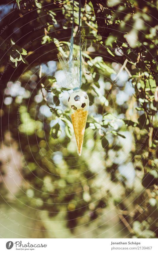 Zuckertütenbaum III Natur Garten Park Gefühle Freude Lebensfreude Vorfreude Begeisterung Beginn Erwartung Schule Einschulung Schultüte Süßwaren Ball Spielzeug