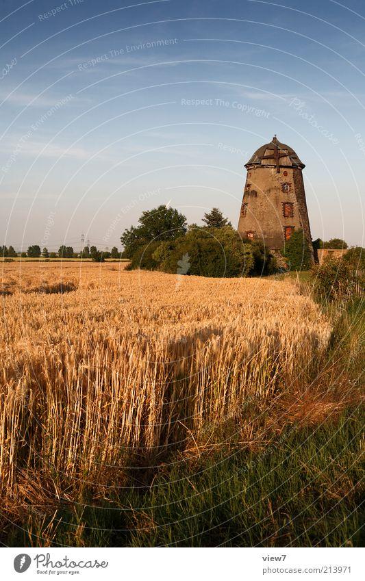 Spätsommer Natur schön alt Himmel Pflanze Wolken Landschaft Feld Umwelt Fassade authentisch Sehnsucht Dorf Getreide Warmherzigkeit Hütte