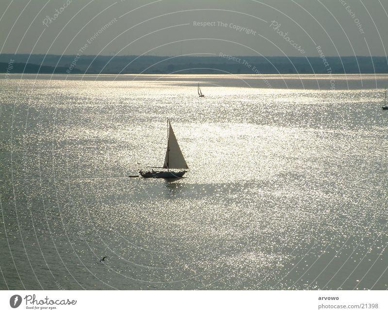 Silberstrom Sonne Wasserfahrzeug Wellen Segel