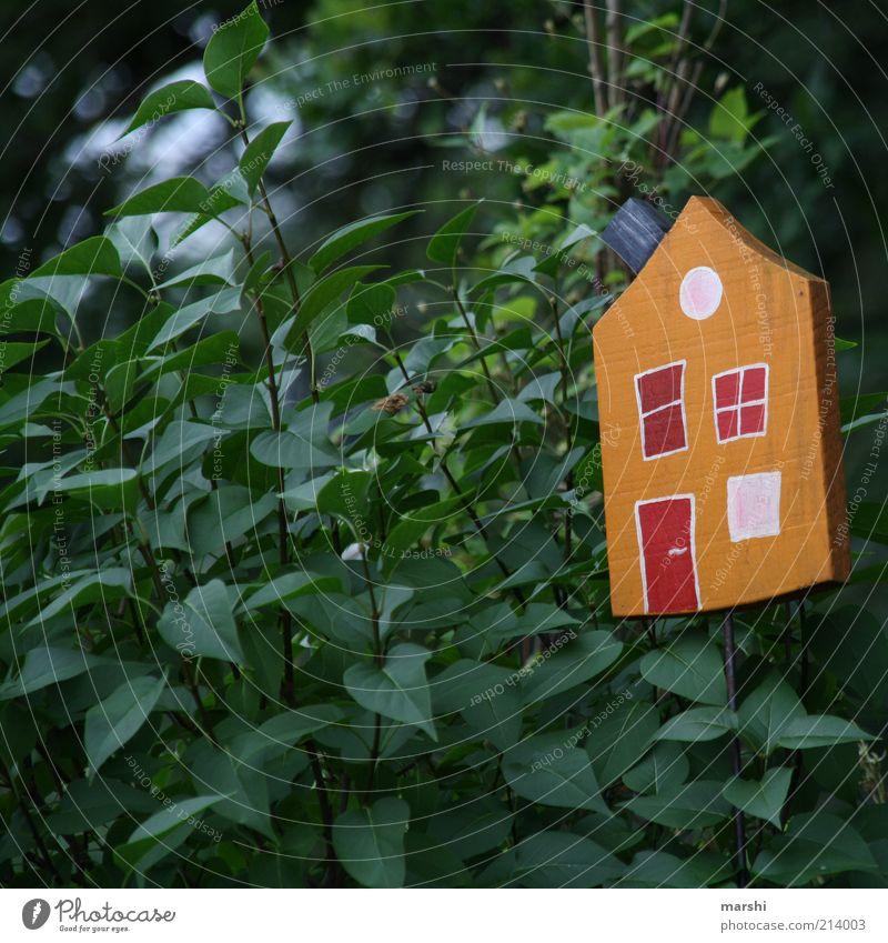 schöner Wohnen im Grünen Natur Baum grün Pflanze Blatt Haus Garten klein Sträucher Dekoration & Verzierung Häusliches Leben Hütte Grünpflanze Gebäude Holzhaus