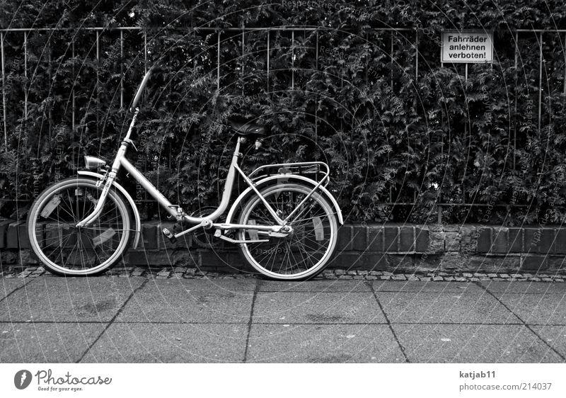 Bike Fahrrad Hinweisschild Bürgersteig Zaun Stillleben parken Verbote Warnschild Schwarzweißfoto Aktion Wegrand Tabubruch