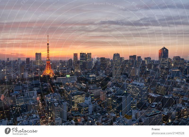 Tokyo Skytree - Sunset Ferien & Urlaub & Reisen Haus Ferne Architektur Lifestyle Gebäude glänzend Hochhaus Technik & Technologie Zukunft kaufen Turm