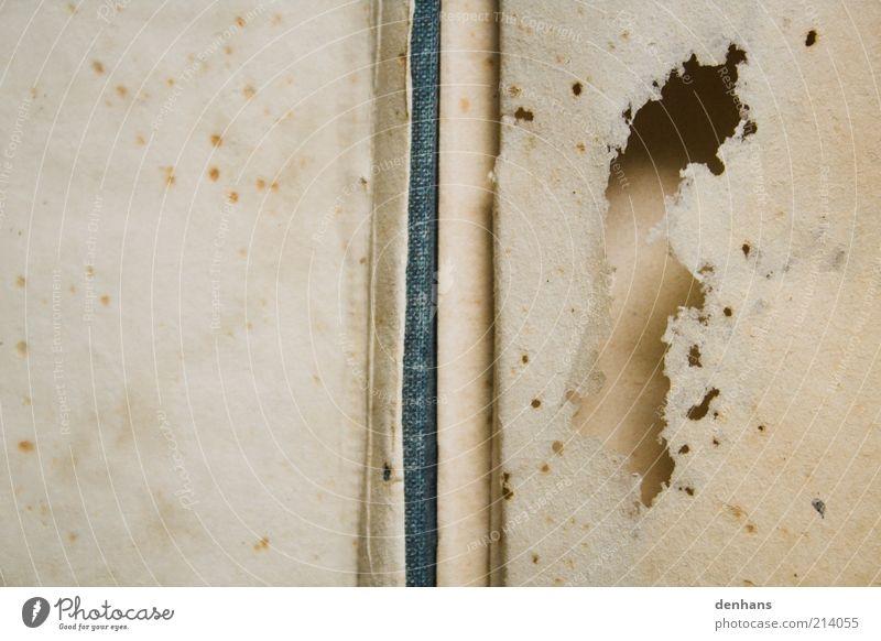 altes Altpapier Handwerk Schreibwaren Papier Zettel historisch Loch vergilbt zerfressen Buch Buchseite Farbfoto Gedeckte Farben Detailaufnahme