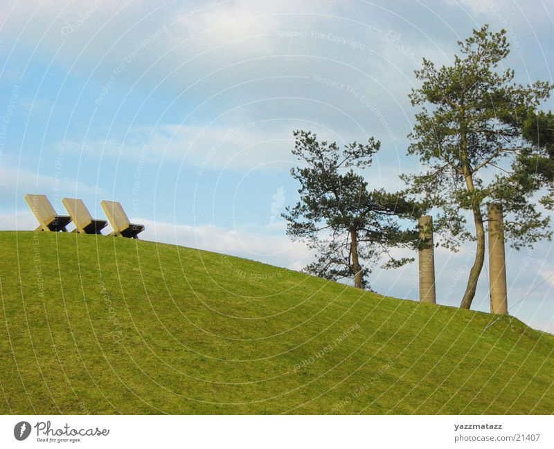 Geordnete Verhältnisse Gras Baum Berge u. Gebirge Himmel Stuhl